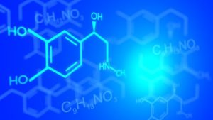 активные компоненты препарата Венарус